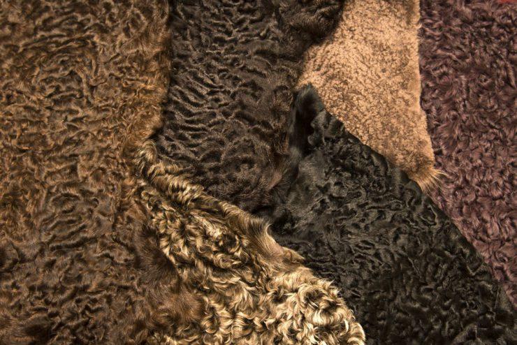 Как называются разновидности овчины и чем они отличаются: особенности астрагана, мутона, стриги и других видов меха