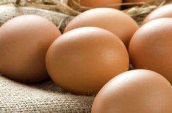 5 методов определения свежести яйца